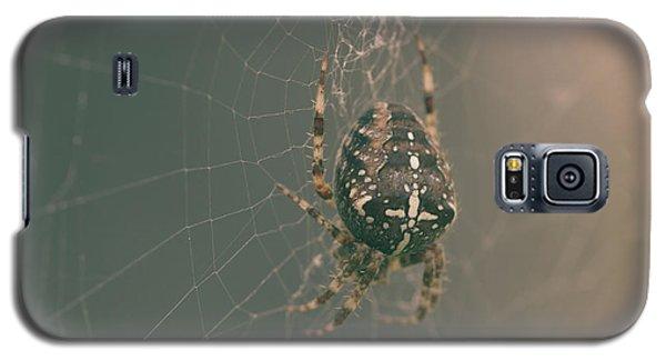European Garden Spider B Galaxy S5 Case