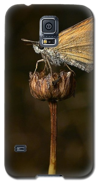 Galaxy S5 Case featuring the photograph European Skipper by Jouko Lehto