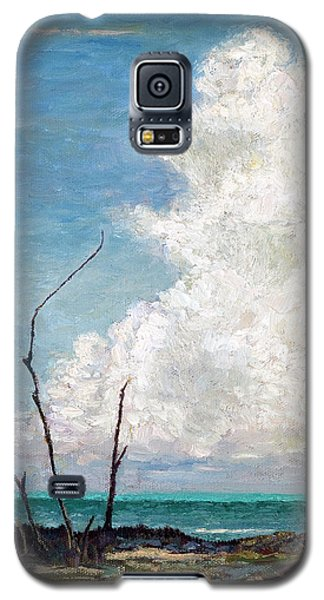 Evening Cloud Galaxy S5 Case
