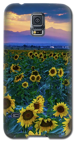 Evening Colors Of Summer Galaxy S5 Case