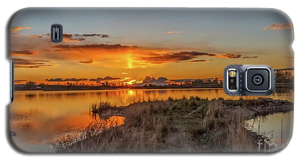 Galaxy S5 Case featuring the photograph Evening Delight by Robert Bales
