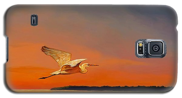 Galaxy S5 Case featuring the painting Evening Flight by David  Van Hulst