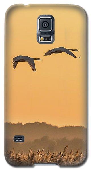 Evening Flight Home Galaxy S5 Case