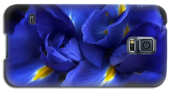 Evening Iris Galaxy S5 Case by Jessica Jenney