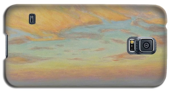 Galaxy S5 Case featuring the painting Evening by Joe Bergholm