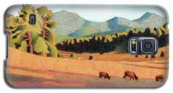 Evening Light Evergreen Galaxy S5 Case