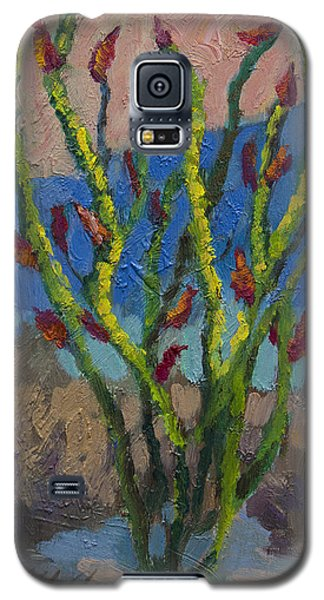 Evening Ocotillo Galaxy S5 Case by Diane McClary