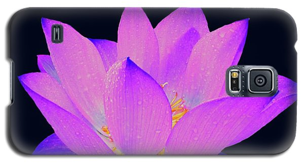 Evening Purple Lotus  Galaxy S5 Case