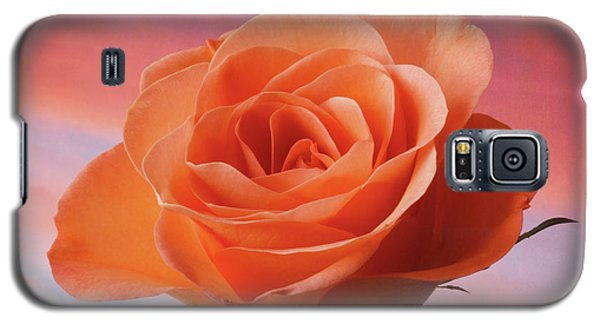 Galaxy S5 Case featuring the photograph Evening Rose by Terence Davis
