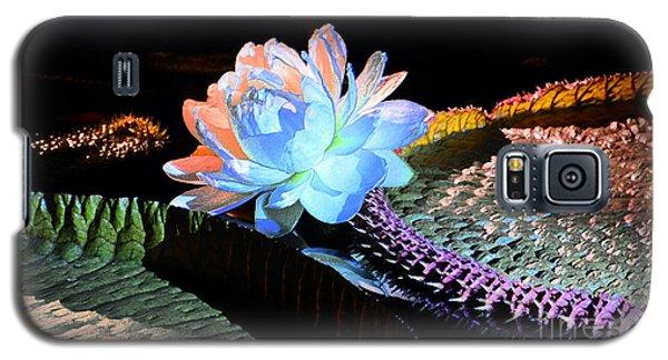 Evening Splendor Galaxy S5 Case