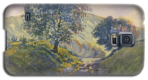 Evening Stroll In Millington Dale Galaxy S5 Case