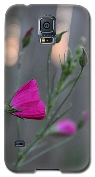 Galaxy S5 Case featuring the photograph Evening Winecup by Elizabeth Sullivan