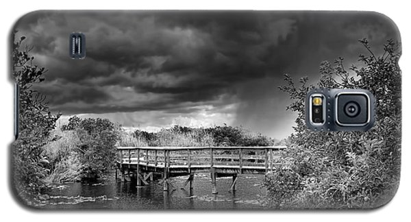 Everglades 0823bw Galaxy S5 Case