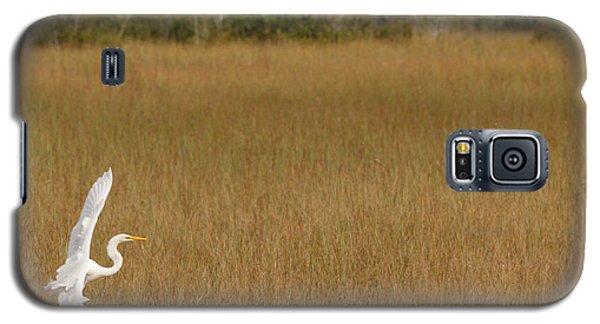 Everglades 429 Galaxy S5 Case