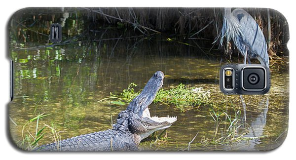 Everglades 431 Galaxy S5 Case