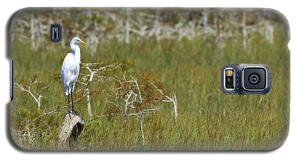 Everglades 451 Galaxy S5 Case