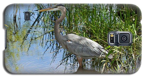 Everglades 572 Galaxy S5 Case