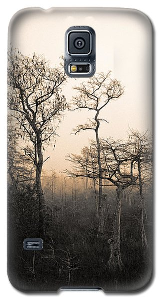Galaxy S5 Case featuring the photograph Everglades Cypress Stand by Gary Dean Mercer Clark