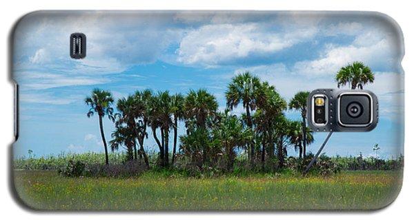 Everglades Landscape Galaxy S5 Case