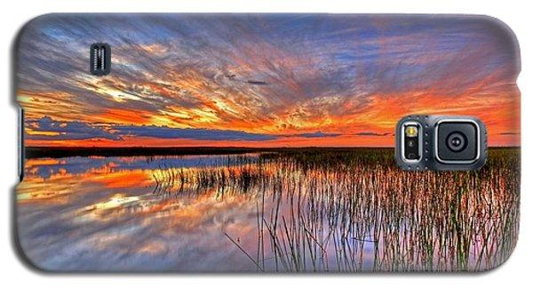 Everglades Sunset Galaxy S5 Case