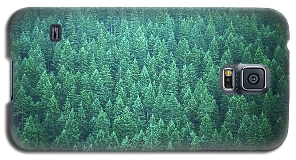 Evergreen Galaxy S5 Case by Laurie Stewart