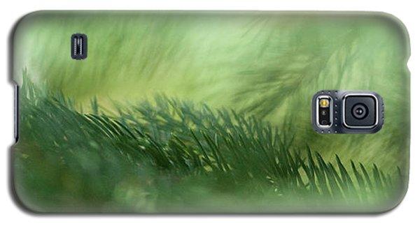 Evergreen Mist Galaxy S5 Case by Ann Lauwers