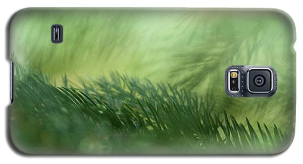 Galaxy S5 Case featuring the photograph Evergreen Mist by Ann Lauwers