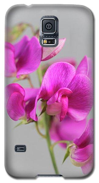 Everlasting 1 Galaxy S5 Case