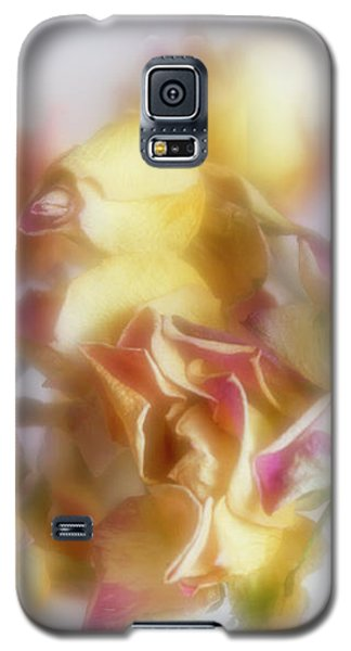 Everlasting Rose Buds Galaxy S5 Case