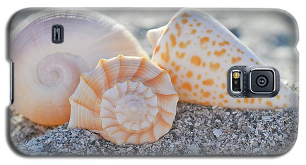 Galaxy S5 Case featuring the photograph Every Shell Has A Story by Melanie Moraga