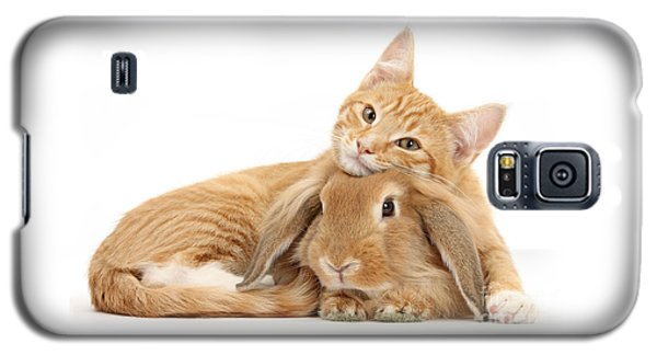 Everybody Needs A Bunny For A Pillow Galaxy S5 Case