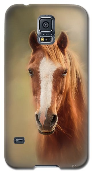 Everyone's Favourite Pony Galaxy S5 Case