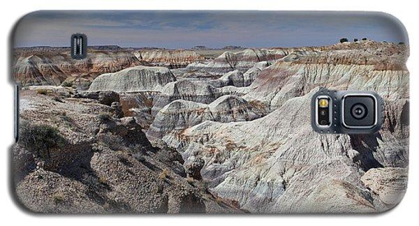 Evident Erosion Galaxy S5 Case