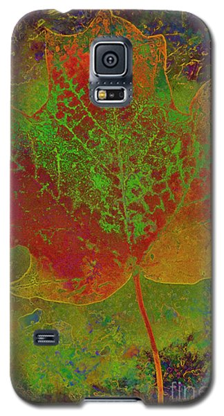 Evolution Of Life Galaxy S5 Case