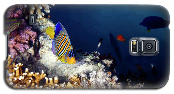 Exciting Red Sea World Galaxy S5 Case