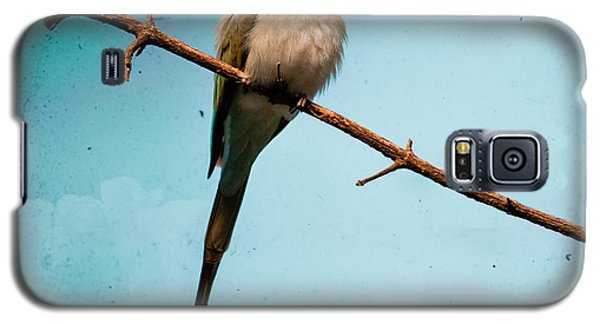Exotic Birds - White Throated Bee Eater Galaxy S5 Case
