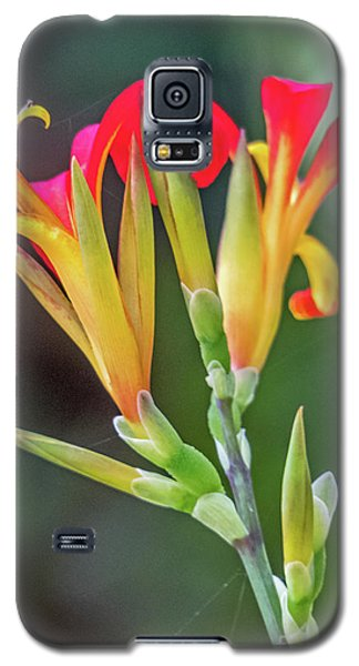 Exotic Flowers Galaxy S5 Case