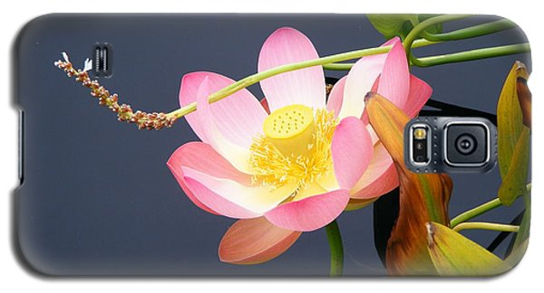 Exotic Waterlily Galaxy S5 Case by Margie Avellino