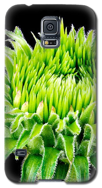 Extreme Green  Galaxy S5 Case by Jim Hughes