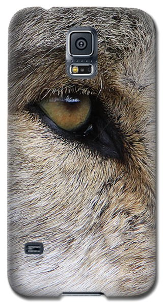 Eye Catcher Galaxy S5 Case