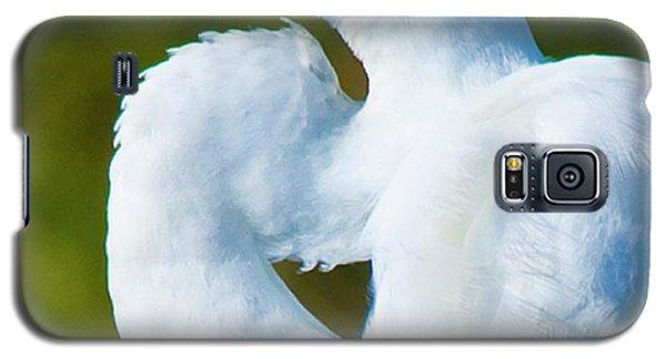 Eye-catching Galaxy S5 Case by Betsy Knapp