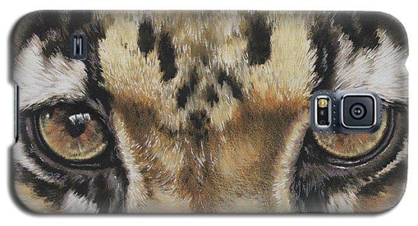 Clouded Leopard Gaze Galaxy S5 Case