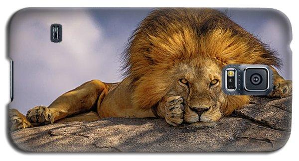 Eye Contact On The Serengeti Galaxy S5 Case