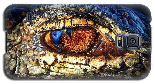 Eye Of The Apex Galaxy S5 Case
