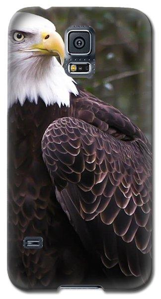 Eye Of The Eagle Galaxy S5 Case