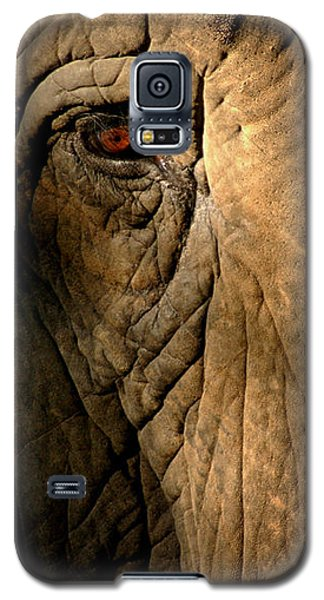 Eye Of The Elephant Galaxy S5 Case