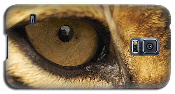 Galaxy S5 Case featuring the photograph Eye On You by Gary Bridger