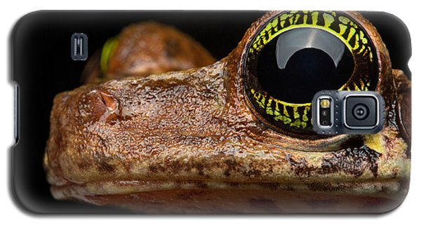 Eye Tropical Tree Frog Galaxy S5 Case by Dirk Ercken