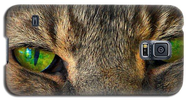 Eyes 1a Galaxy S5 Case