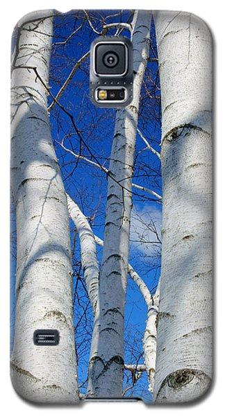 Eyes Of Birch Galaxy S5 Case
